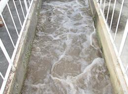 浄化槽用殺菌消毒剤